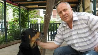 DIMON-Одинокий мужичок за 50