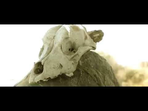 LIM - Eldorado #2 (Teaser officiel)