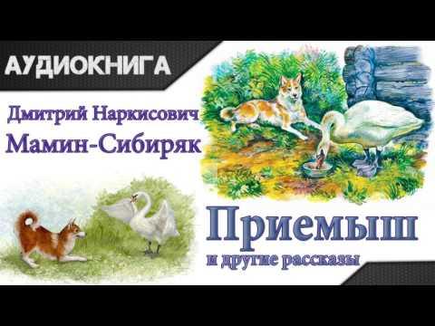 Приемыш и другие рассказы Д.Н.Мамин-Сибиряк. Аудиокнига