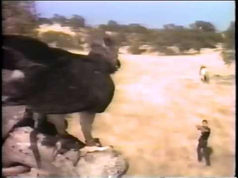 HARPY Made for TV 1971   Hugh O'Brian, Elizabeth Ashley, Marlyn Mason, Tom Nardini