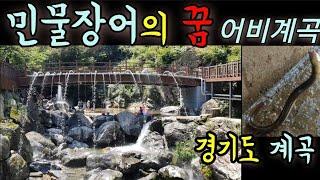 민물장어의 꿈, 어비계곡/일상여행 서울 근교 경기도 계…