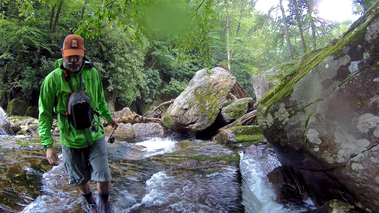 Backcountry fly fishing for brook trout in great smoky for Smoky mountain trout fishing
