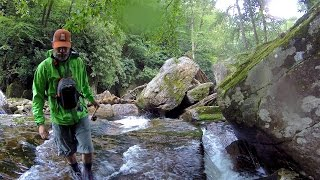 Backcountry Fly Fishing For Brook Trout In Great Smoky Mountains National Park