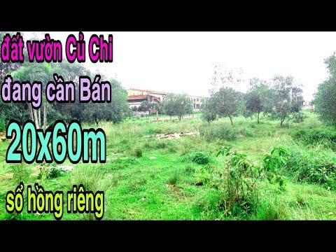 Bán lô đất vườn[Giá Rẻ] tại huyện Củ Chi, 20×60, sổ hồng riêng .