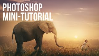 Photoshop Mini-Tutorial: Taking an Elephant for a Walk