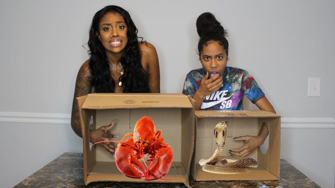 What's in THE BOX Challenge (PART 3)!!!!