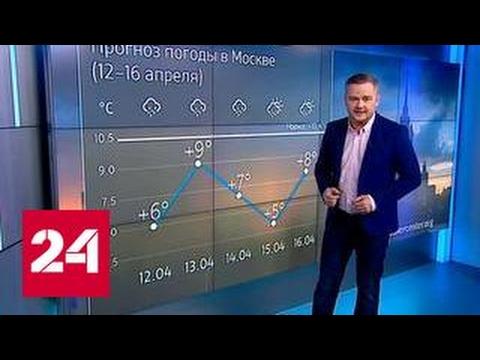 """""""Погода 24"""": погодные качели"""
