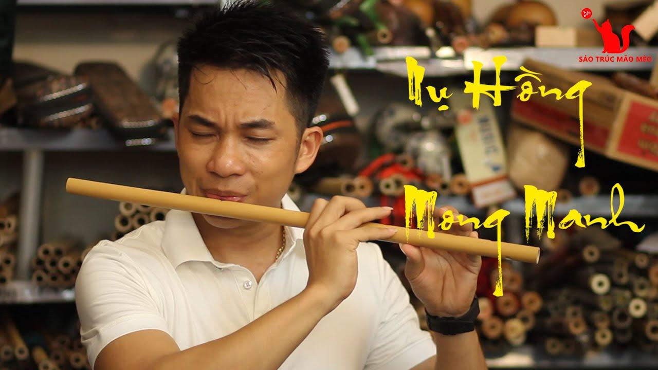 Nụ Hồng Mong Manh Sáo Trúc Mão Mèo