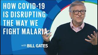 Bill Gates: How COVID-19 Iṡ Disrupting The Way We Fight Malaria