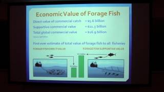 SoMAS - Lenfest Forage Fish Task Force