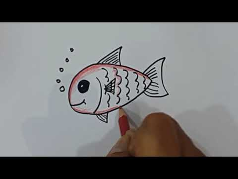 Belajar Cara Menggambar Ikan Mas Dengan Mudah Youtube