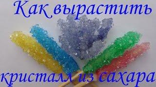 Как вырастить кристалл из сахара! Опыты для детей!