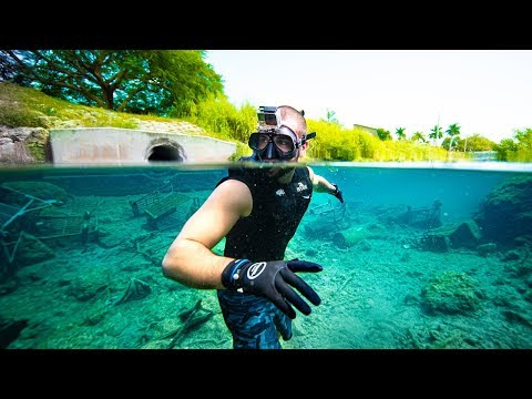 Treasure Hunting Miami's DIRTIEST Underwater Canal!! (beautiful Fish)