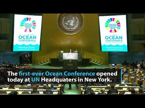 UN conference opens with call to protect the oceans for future generations
