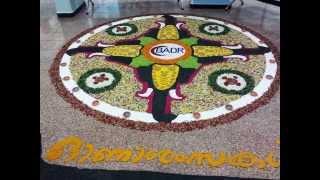 Athapookalam, Onam Pookalam Theme -Thrissur Pooram