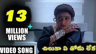 చిలక ఏ తోడు లేక ఎటేపమ్మ ఒంటరి నడక - Subhalagnam Movie    Jagapathi Babu, Aamani, Roja    TVNXT Music