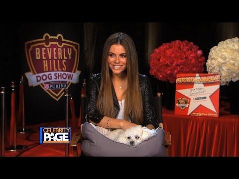Inside Access: Beverly Hills Dog Show