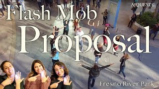 Video Surprise Wedding Proposal Flash Mob | River Park (Fresno, CA) | AJQuest Dance download MP3, 3GP, MP4, WEBM, AVI, FLV Agustus 2018