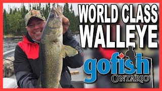 World Class Walleye of Lac Seul- New season teaser