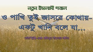 ও পাখি তুই যাসরে কোথায় | O Pakhi tui Jasre Kothay-Bangla Islamic song (Naat) By mominul Islam