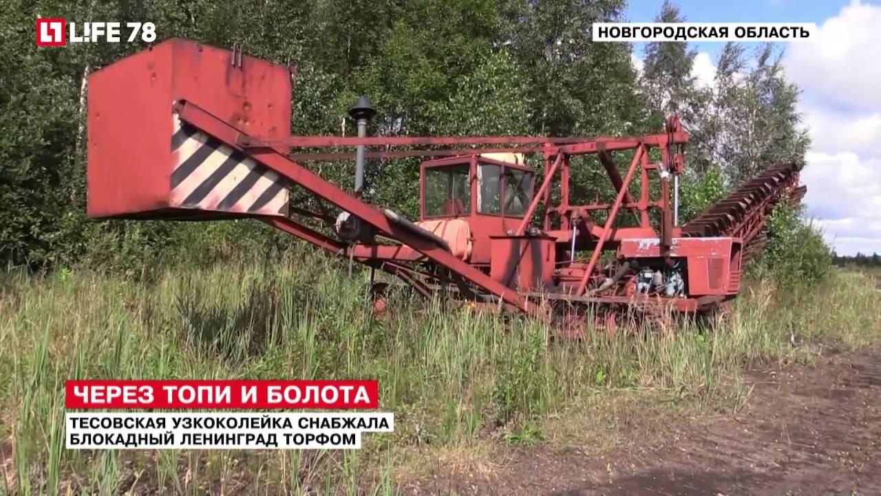 Тесовская узкоколейка снабжала блокадный Ленинград торфом