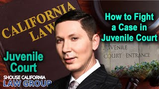 How to fight a case in juvenile court