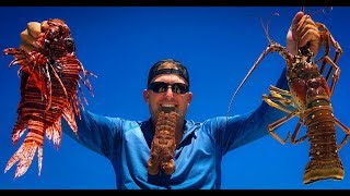 LIONFISH, Mackerel, Lobster and RIBEYES! {Catch Clean Cook} Gravity Grill