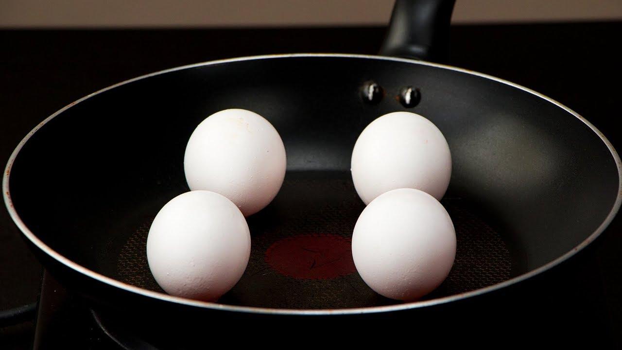 Kerek tojás megtermékenyített székletével - gvk-egyesulet.hu