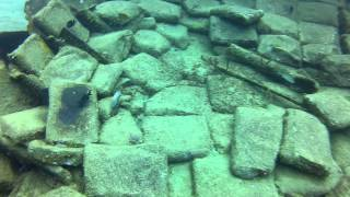 St. Lucia - Scuba Diving 10 -Wreck Dive - Carnival Cruise Excursion