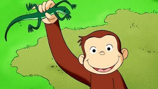 好奇的喬治 🐵Curious George Chinese 🐵好奇猴喬治和隱形的聲音 🐵第1季 全劇集  🐵动画片 🐵卡通 🐵动画 🐵Cartoon 🐵Animation