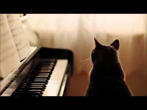 2. Part 流行音乐钢琴曲 19首 轻音乐 纯音乐 Light music