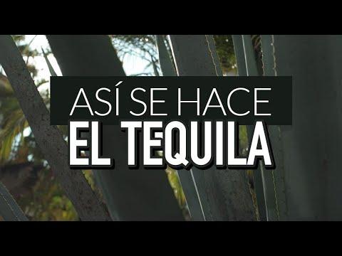 ¿Cómo se hace el tequila?