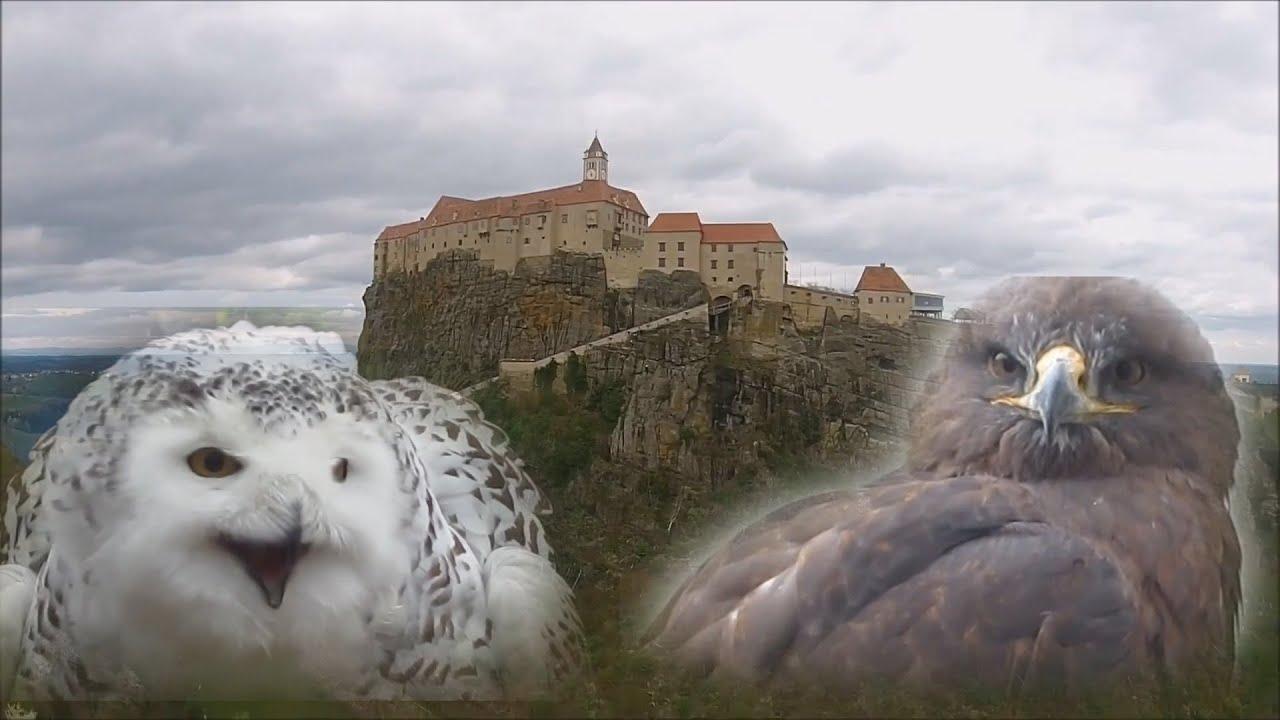 Австрия.   Замок Ригерсбург.  Туризм. Отдых. Путешествия.