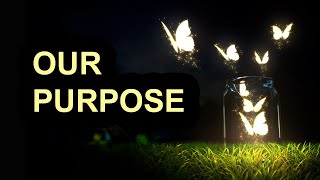 The Power Within - Our Purpose