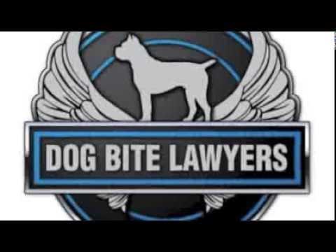 Statute of Limitations Dog Bite Lawsuit Texas