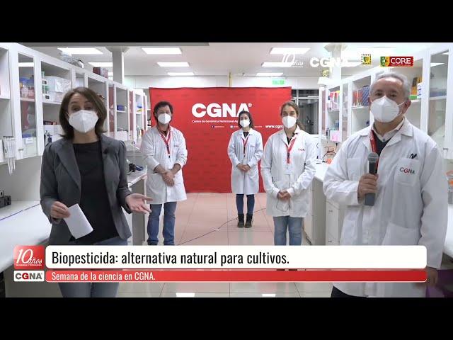 Semana de la Ciencia en CGNA