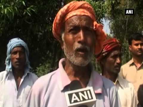 Rain, hailstorm damage wheat crops in Uttar Pradesh