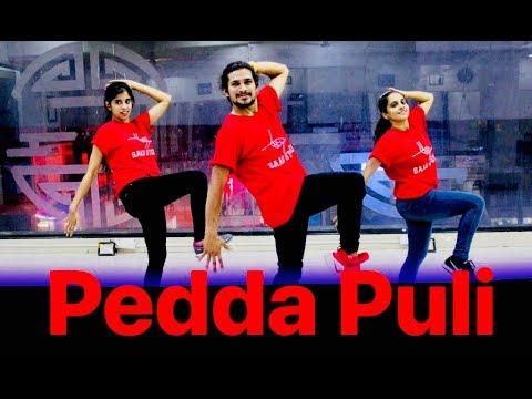Pedda Puli dance video song | teen maar dance | Chal Mohan Ranga Movie Songs | saadstudios