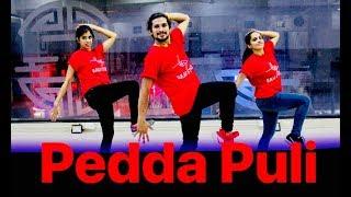 Pedda Puli dance song | teen maar dance | Chal Mohan Ranga Movie Songs | saadstudios