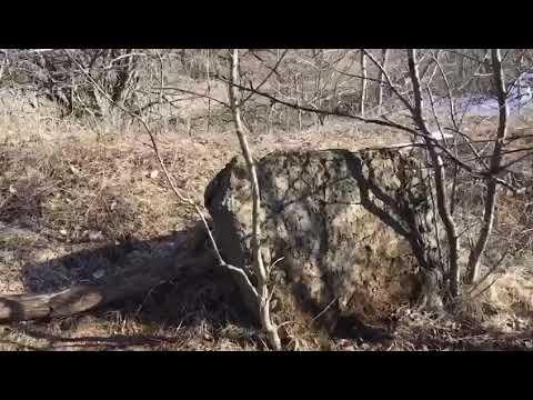 Камень со старинными надписями, г.Ставрополь