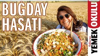 Makarnanın Topraktan Sofraya Yolculuğu | Buğday Hasatı ve Kolay Makarna Salatası Tarifi
