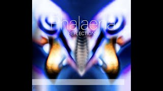 "PHALAENA présente ""REFLECTIONS"" (Antarctica records)"