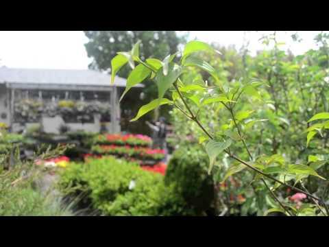 Sag Harbor Garden Center