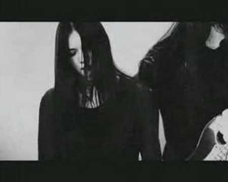 Tvangeste - Raven