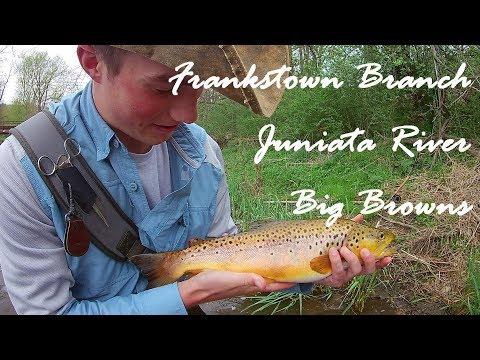 WBD - Fly Fishing Frankstown Branch Juniata  Euro Nymphing Big Browns
