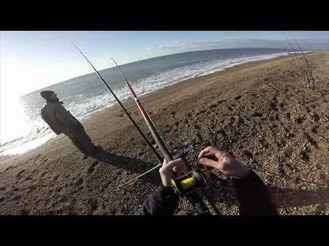 Sea Fishing Chesil Beach . Cod And Whiting. Episode 11 November 2019.