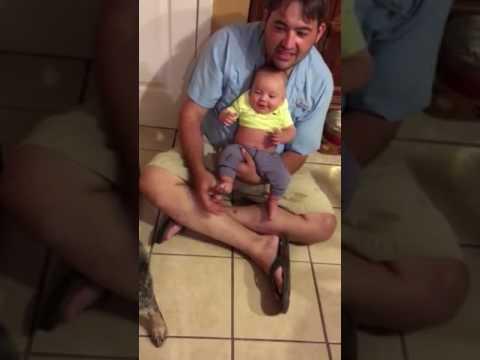 3 month old baby laughs at barking blue heeler dog