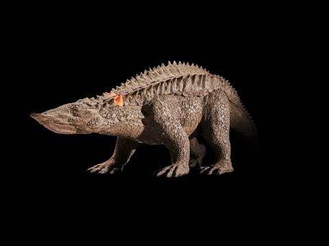 Before Ankylosaurs, There Were Aetosaurs