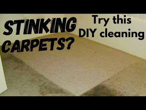 DIY Carpet cleaning | Disinfect your carpet| Baking soda+salt