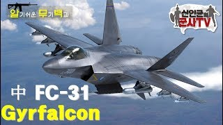 트럼프가 비난한 짝퉁 F-35! 中 FC-31 스텔스 전투기